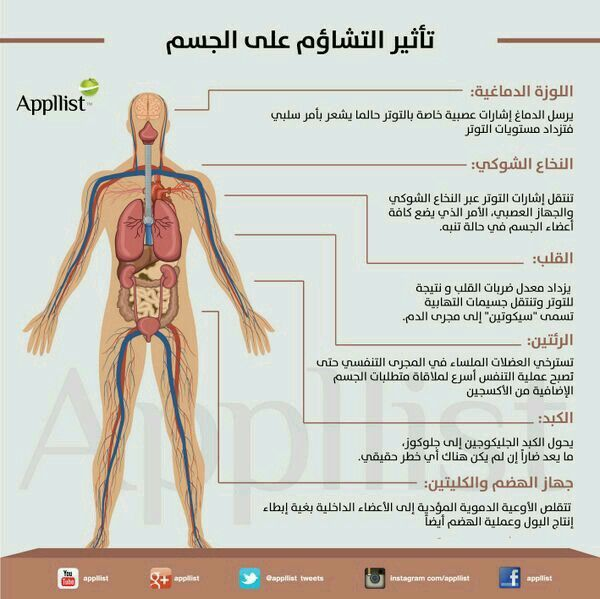 Pin By Ammar Mohammed On Food Ideas Human Development Health Lifestyle Health And Nutrition
