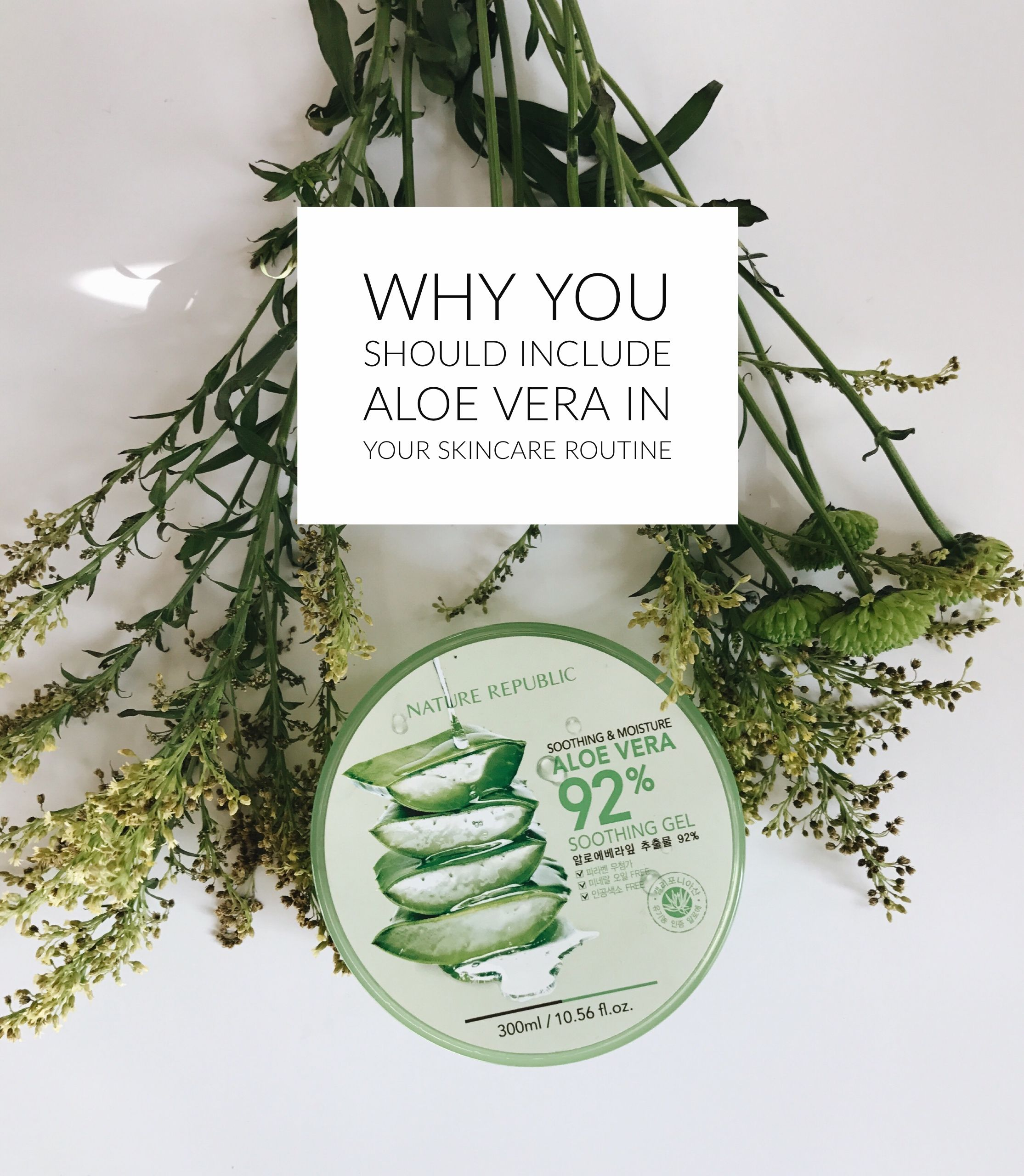 Why You Should Add Aloe Vera To Your Skincare Routine Kesehatan Dekorasi