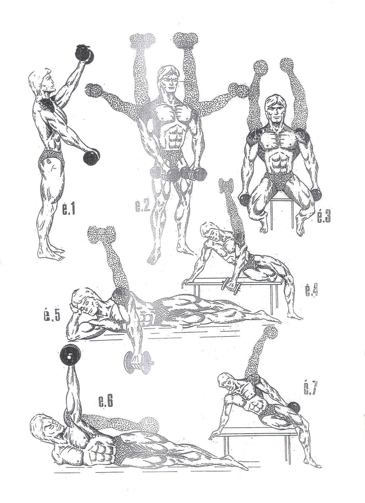 Back Shoulder Workout At Home