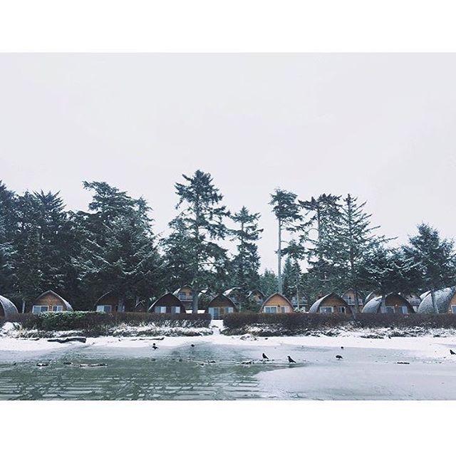The perfect winter escape 🌲 RG @ashmrosiee
