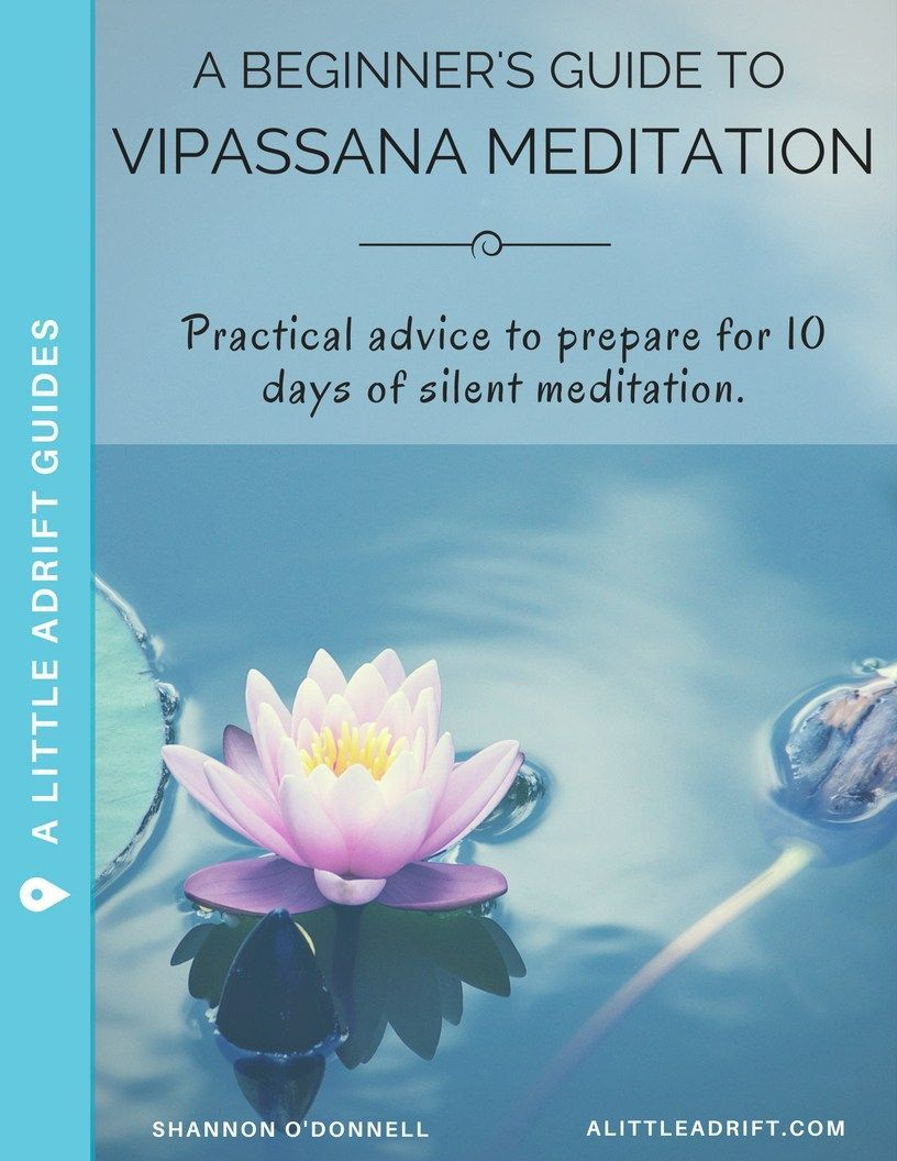 A guide for beginners thinking of taking a Vipassana ...