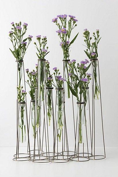 Test Tube Vase Anthropologie By Paula For The Home Pinterest
