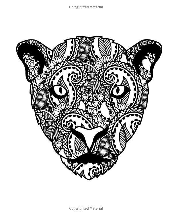 Amazon Com Wild Cat Coloring Book For Adults Big Cat Coloring Book For Grown Ups Including 40 Paisley And Henna St Cat Coloring Book Wild Cats Coloring Books