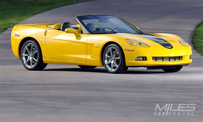 Compare Car Rental Companies In Tampa Car Rental Company Car