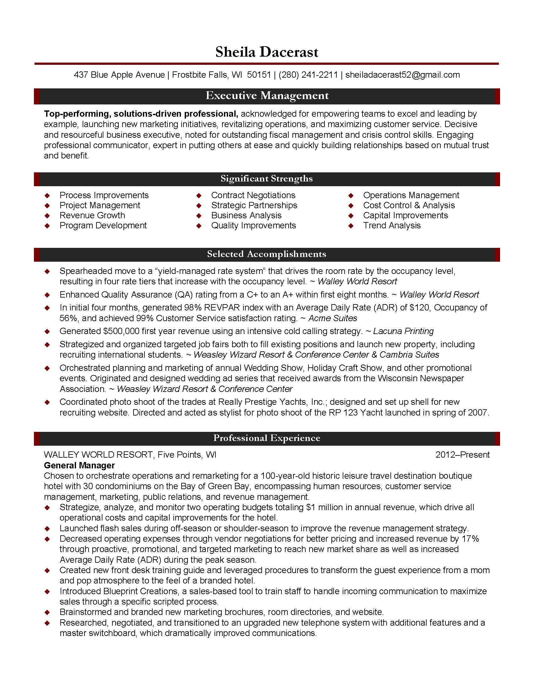 Executive Director Resume Non Profit Service Project