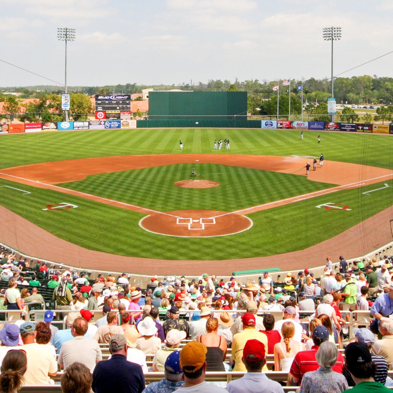 8 Things To Know When Planning An Mlb Spring Training Trip Mlb Spring Training Cardinals Spring Training Spring Training Florida