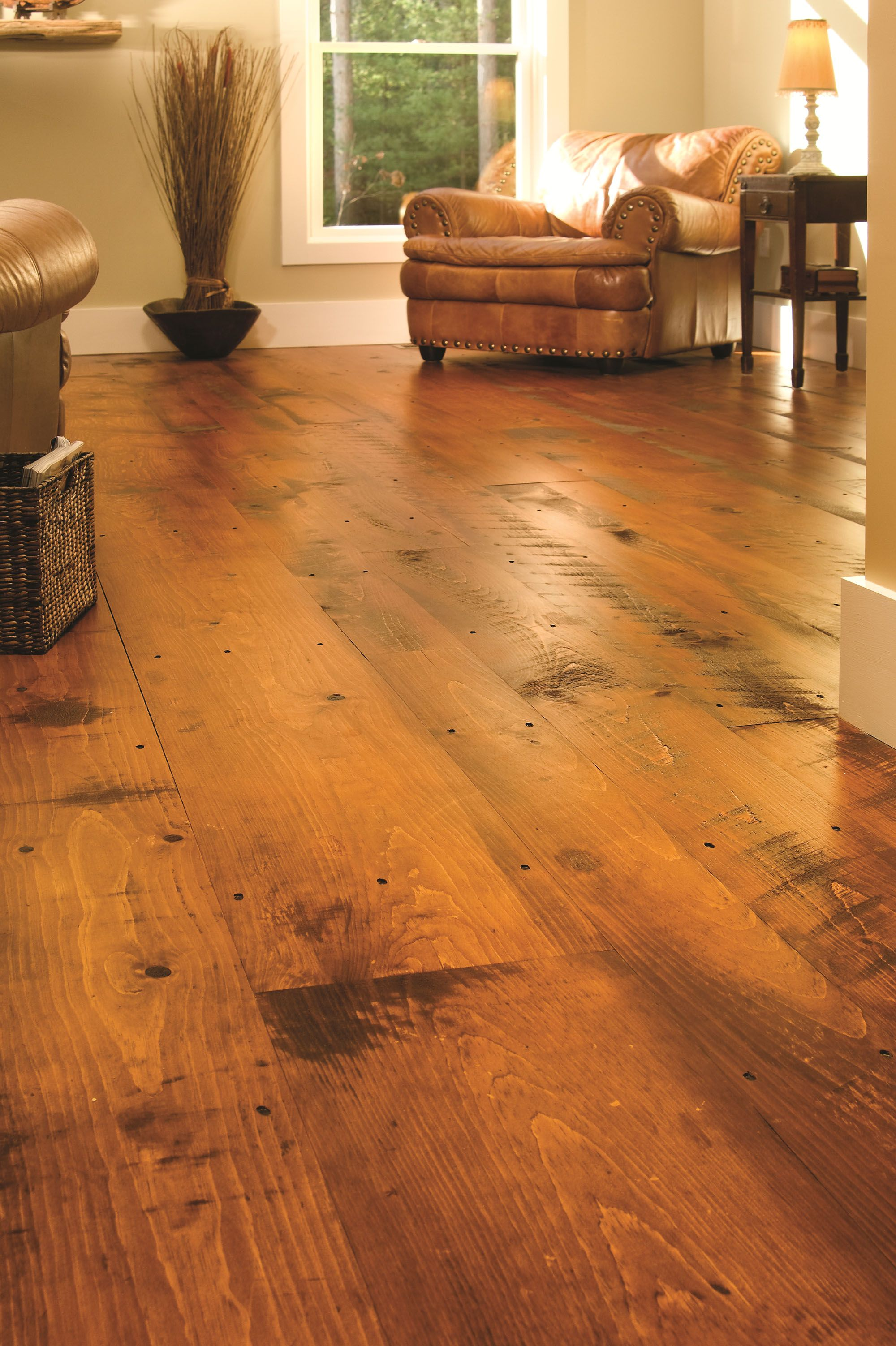 Eastern Hit Or Miss White Pine In A Traditional Living Room Wide