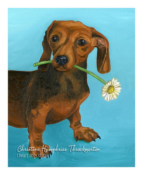 Looking For A Good Home Original Dachshund Oil Painting By I Heart
