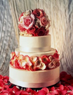 Extraordinary Desserts   Finest desserts, wedding cakes, ice creams, coffees, teas, fine wines, craft beers in San Diego, California