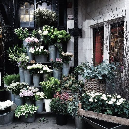 41 degrees and you can still shop the flower market.  (at Liberty's)