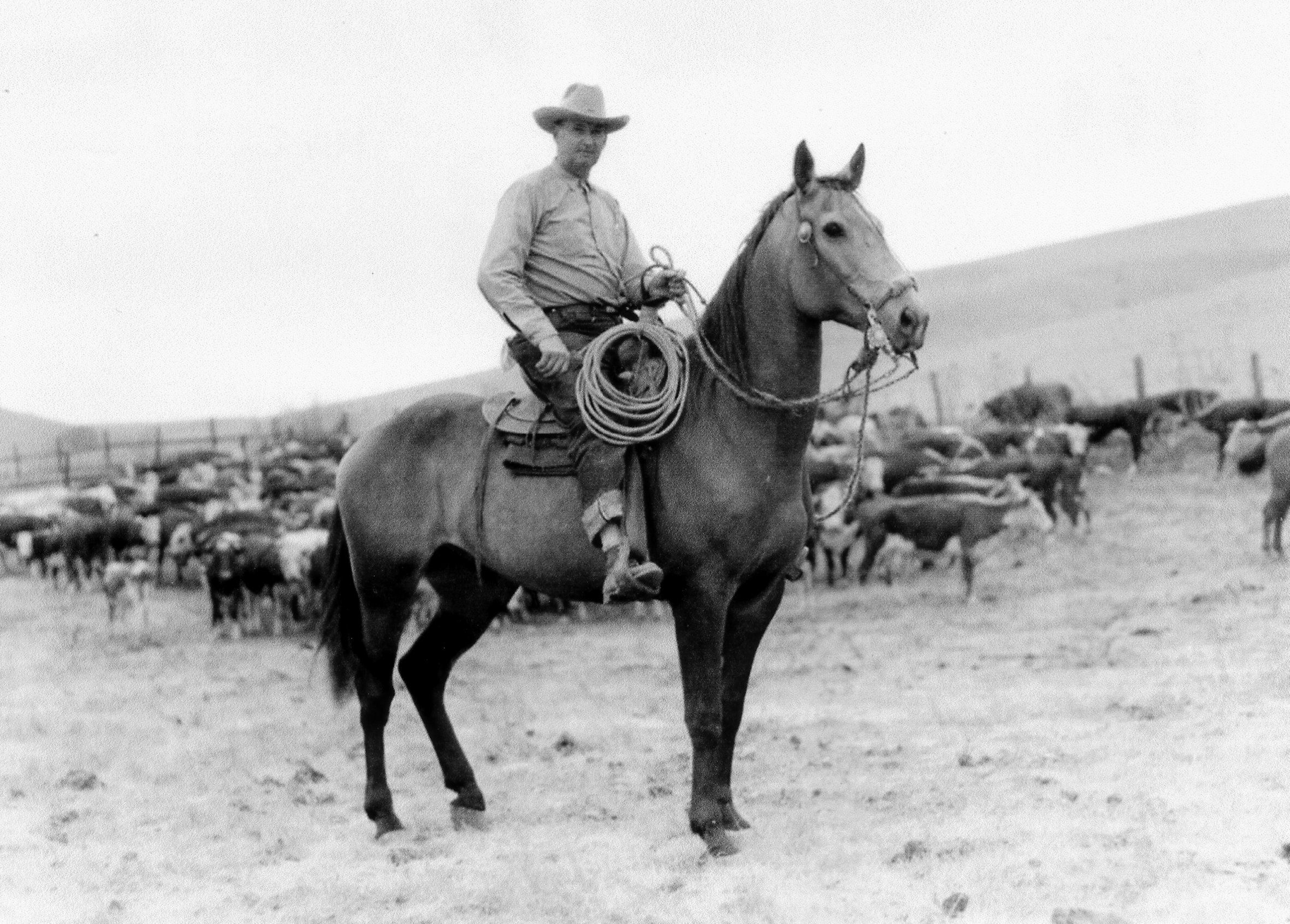 cowboys and cattlemen Both cowboys and cattlemen were influenced by this context, but cattlemen looked outside the ranch for af- firmation of their manhood, while cowboys looked mainly to each other.