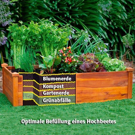 Hochbeete online kaufen bei Gärtner Pötschke