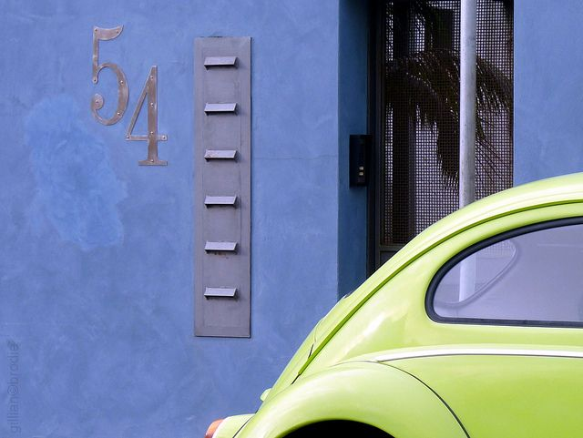 beetle 54 by gilliannb, via Flickr