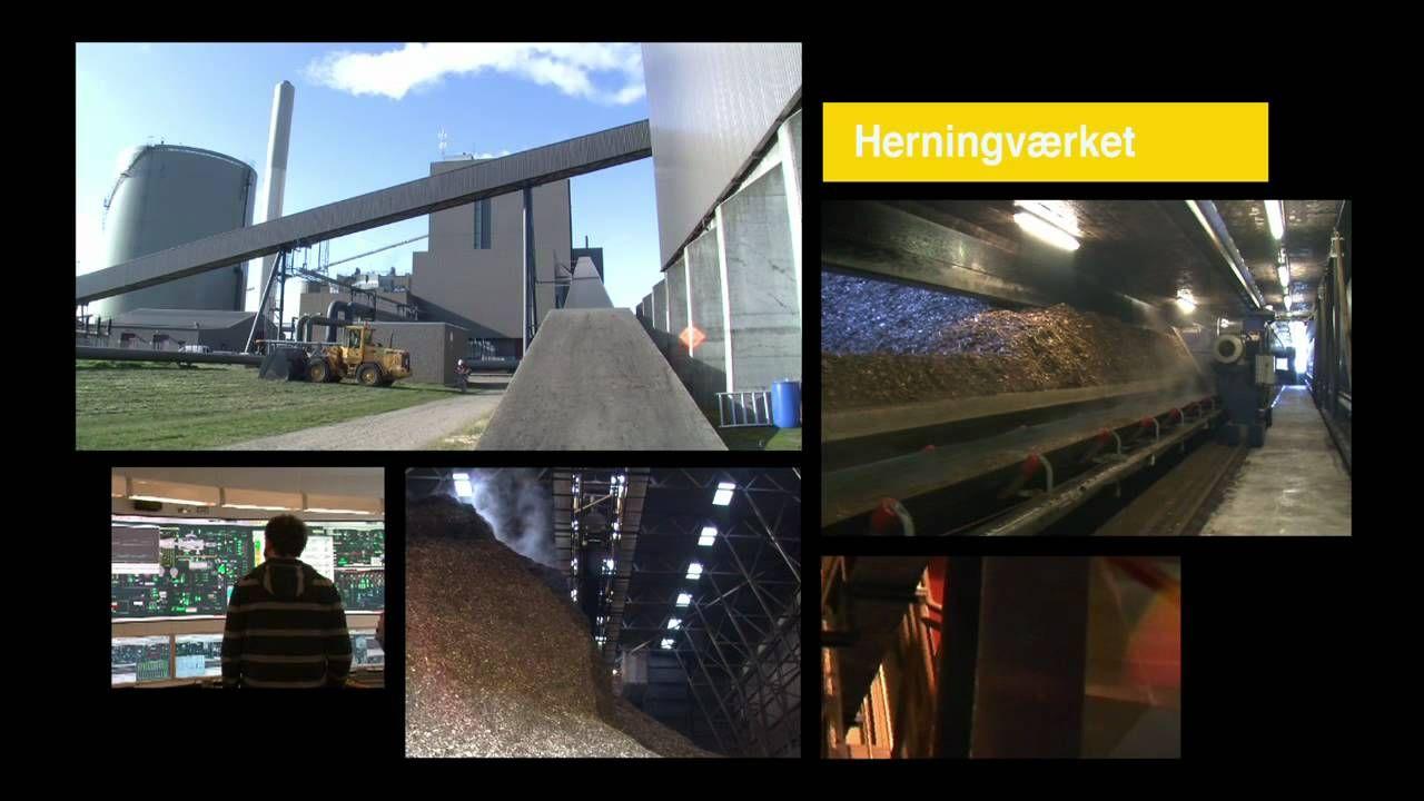 Biomasse i Danmark Danmark, Bad