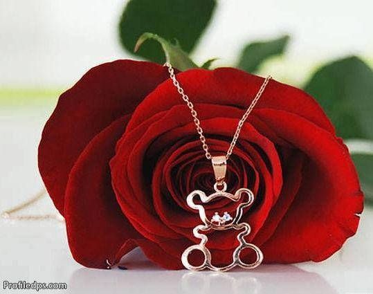 Pin De Luz En Flowers Thing 1 Rosas Flores