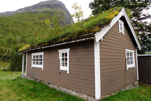 Traditional Norwegian Roofs Of Grass Living Roofs Roof
