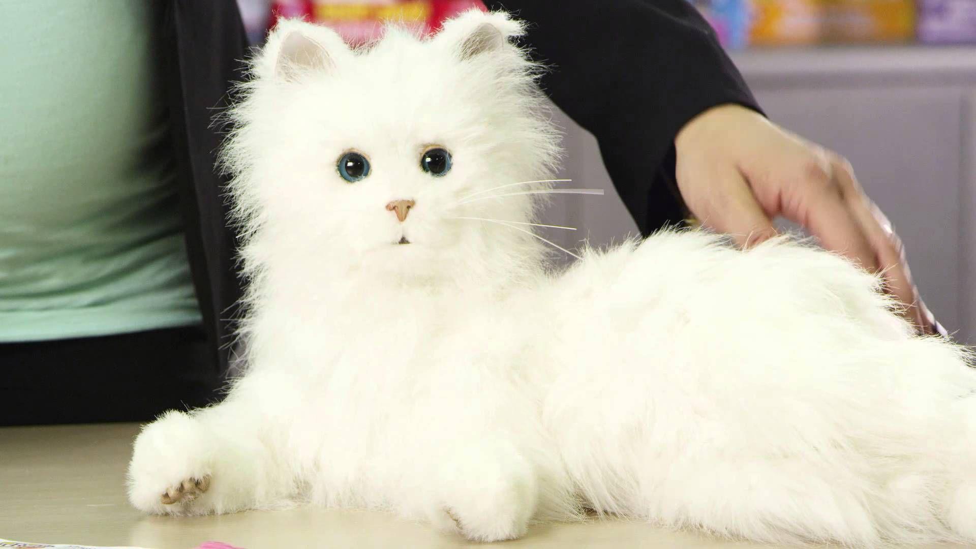 Fur Real Lulu My Cuddlin Kitten Youtube Kitten Toys Kitten Toys R Us