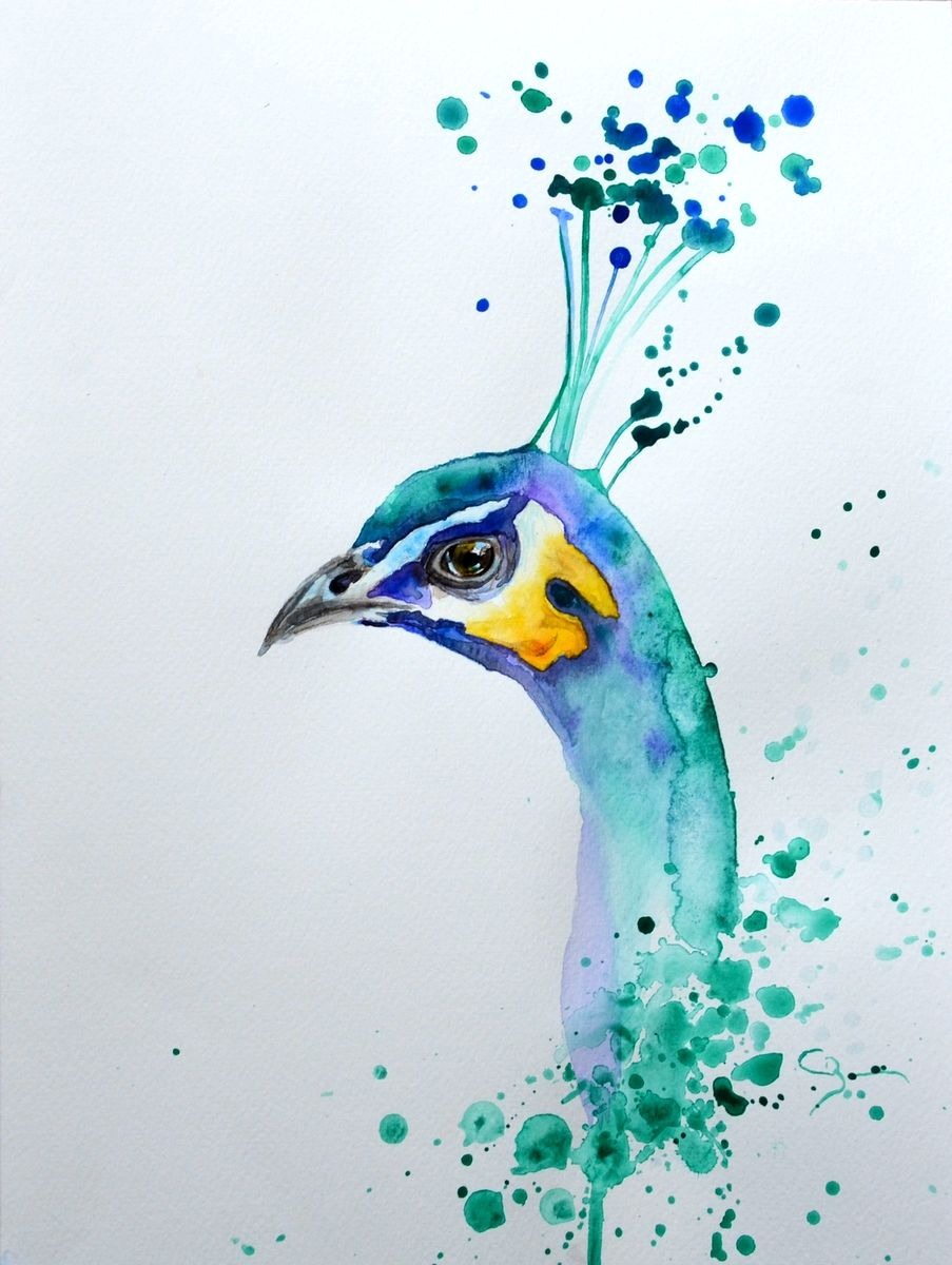 Peinture Animaliere Peintures Animalieres Oiseau En Aquarelle