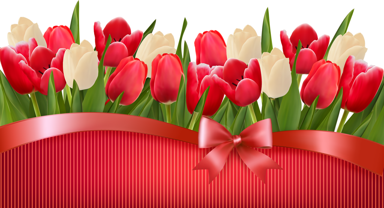 Tyulpany Tulips Art Tablet Wallpaper Colorful Wallpaper