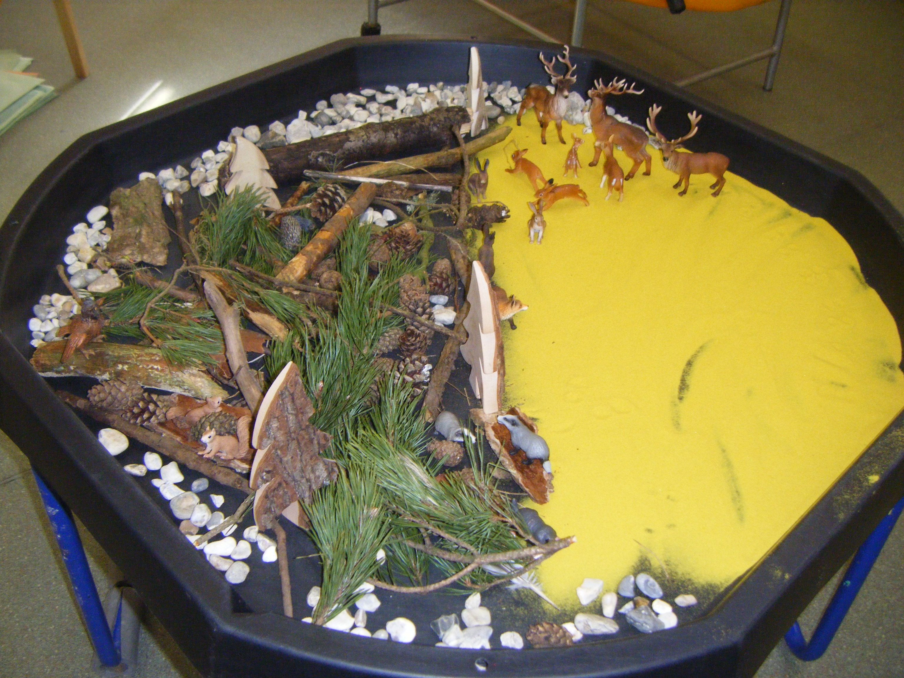 Wildlife Sensory Play On What Looks To Be A Large Plastic Lid Sensory Play Tuff