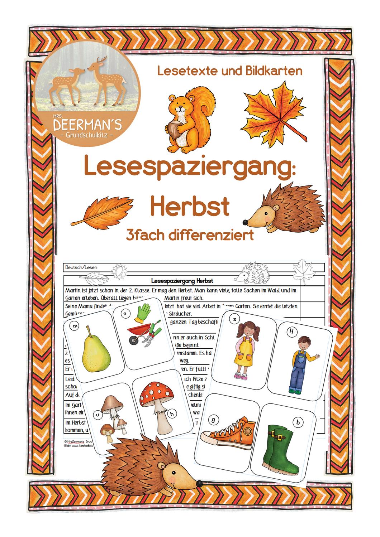 Lesespaziergang Herbst Dreifach Differenziert Unterrichtsmaterial In Den Fachern Deutsch Fachubergreifendes Lesen Unterrichtsmaterial Bildkarten