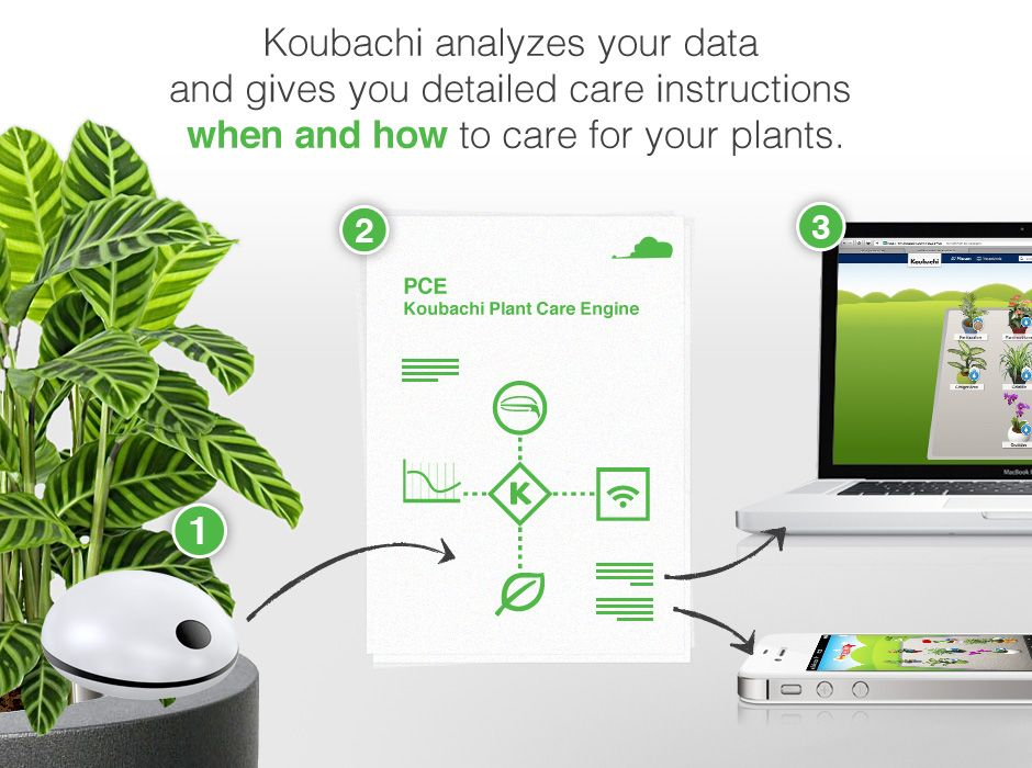 Digital plant sensor tells you wirelessly what your plant needs.  Can I wirelessly tell it to water for me?