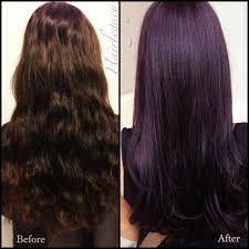 Thick Dark Chocolate Brown Hair