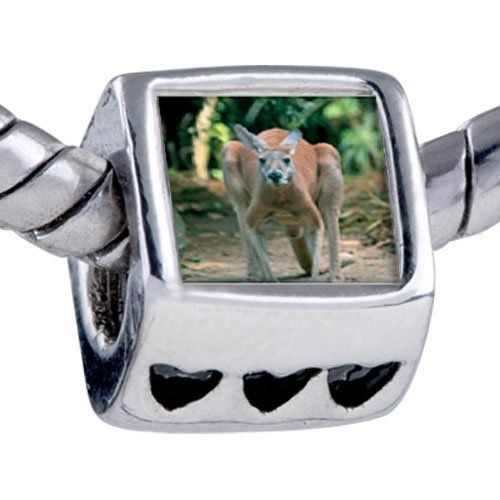 Pugster Australia Kangaroo Beads - Chamilia Bead & Bracelet Compatible Pugster. $12.49. Hole size is approximately 4.8 to 5mm. Fit Pandora, Biagi, and Chamilia Charm Bead Bracelets. Bracelet sold separately. It's the photo on the heart charm. Unthreaded European story bracelet design