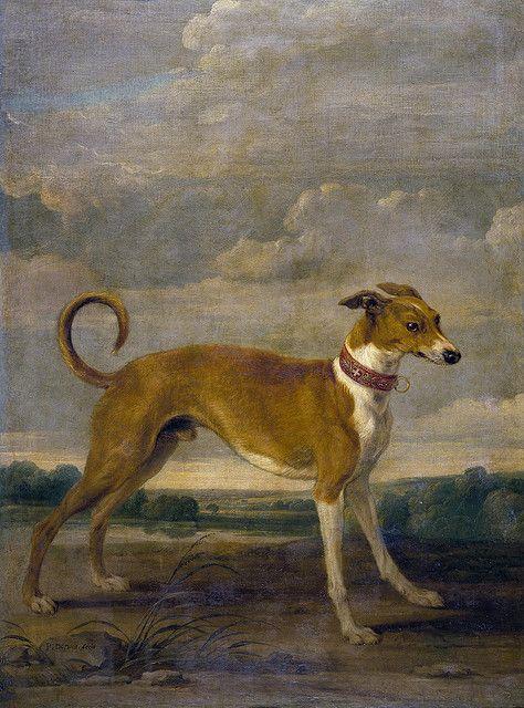 Vos Paul De 1591 95 1678 Un Perro Dog Art Canine Art Dog Paintings