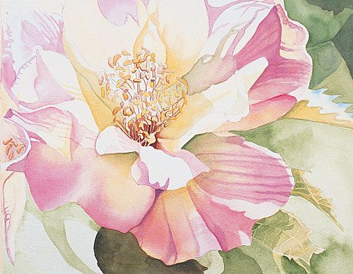 Watercolor Demonstration Painting Flowers Floral Watercolor