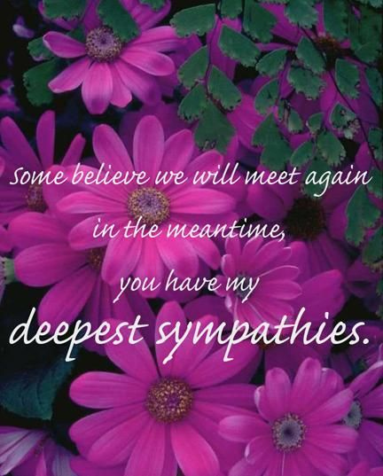 you have my deepest sympathy quotes sayings in 2018 pinterest