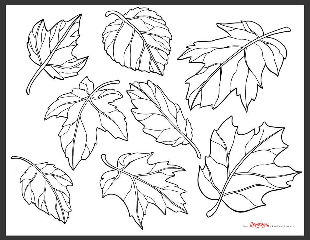 Fall Pumpkin Coloring Page Images