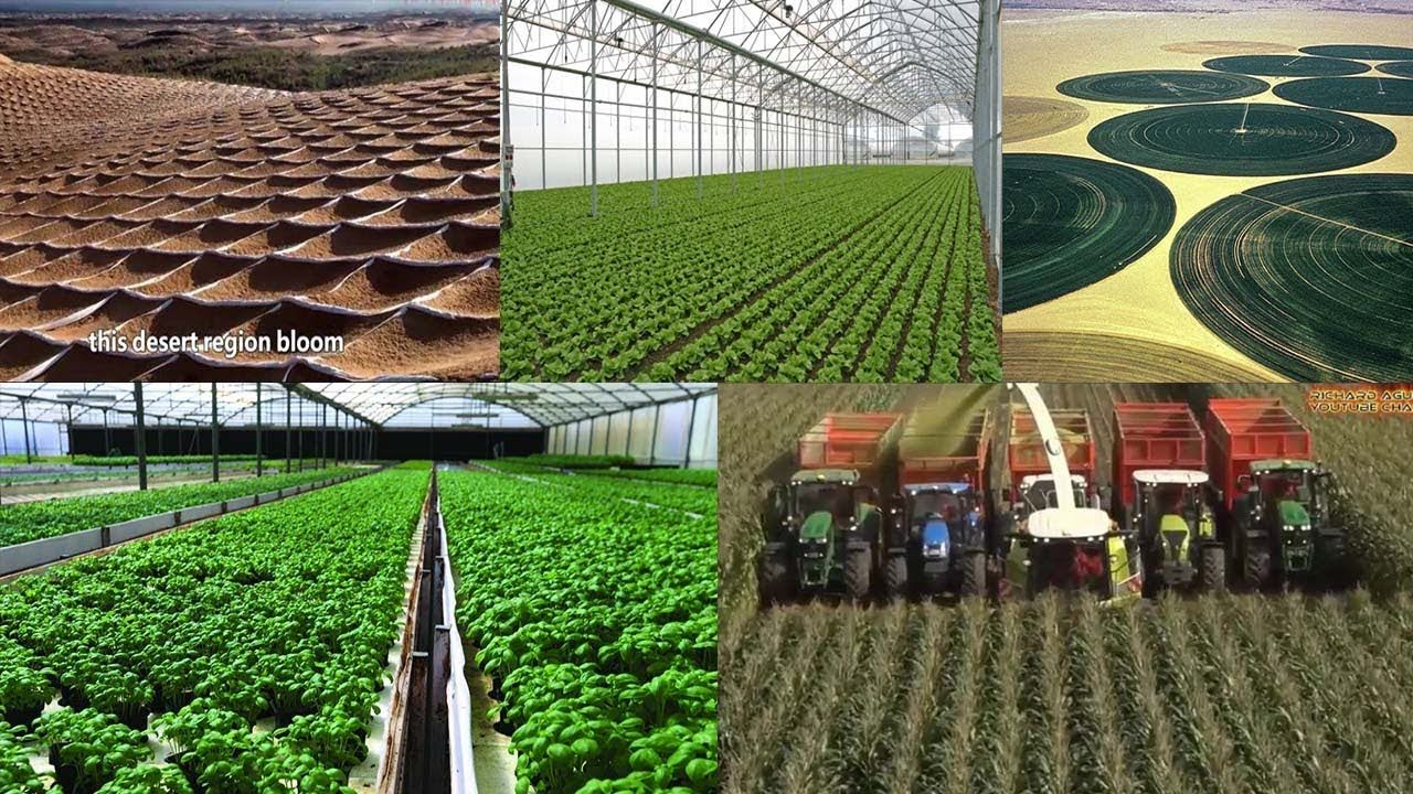 The Future Of High Tech Desert Farming Modern Technology Agriculture Turning Desert Green Top Stories Smart Agriculture Technology Being Used Moder Imperio