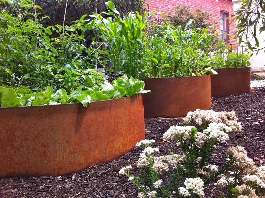 Planting ideas for shallow soil Pool landscaping
