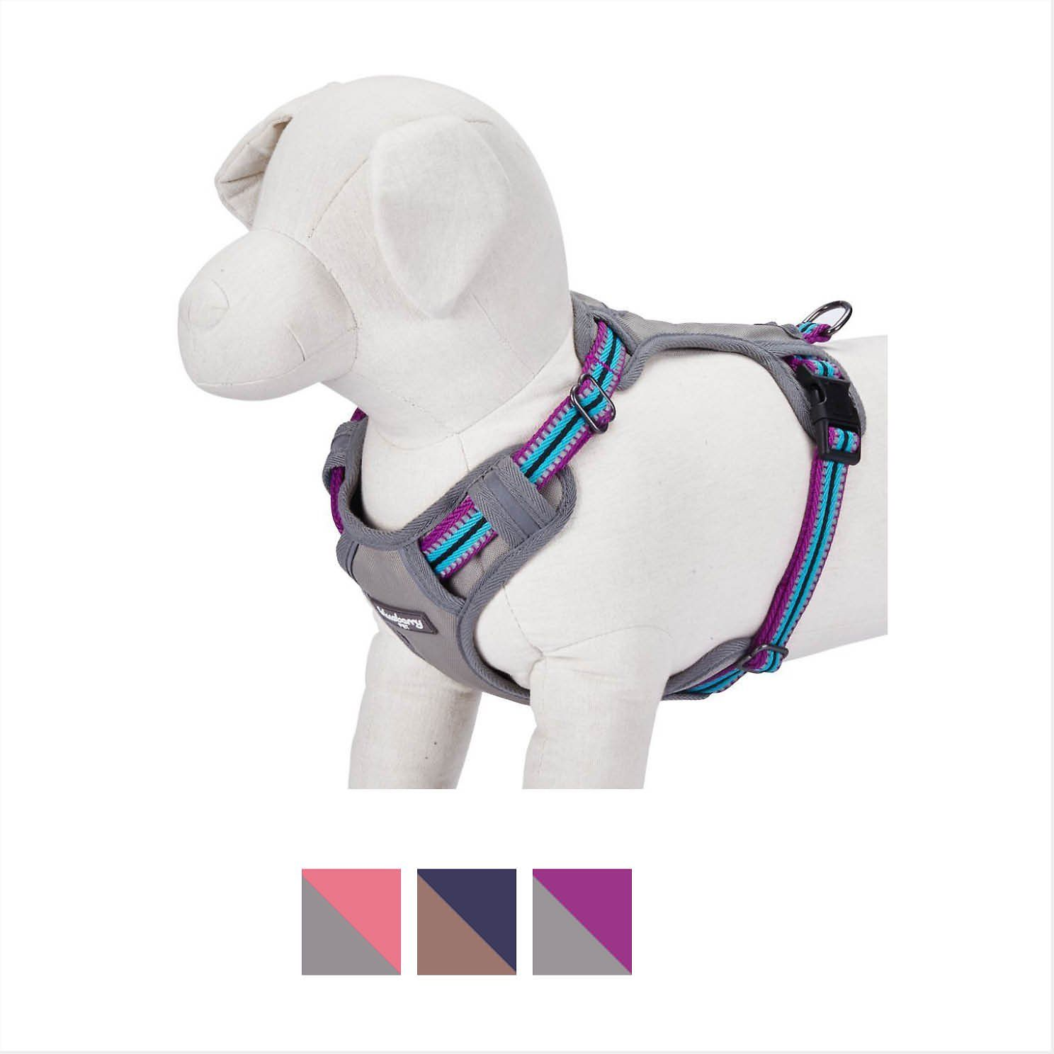 Blueberry Pet 3m Reflective Multi Colored Stripe Padded Dog