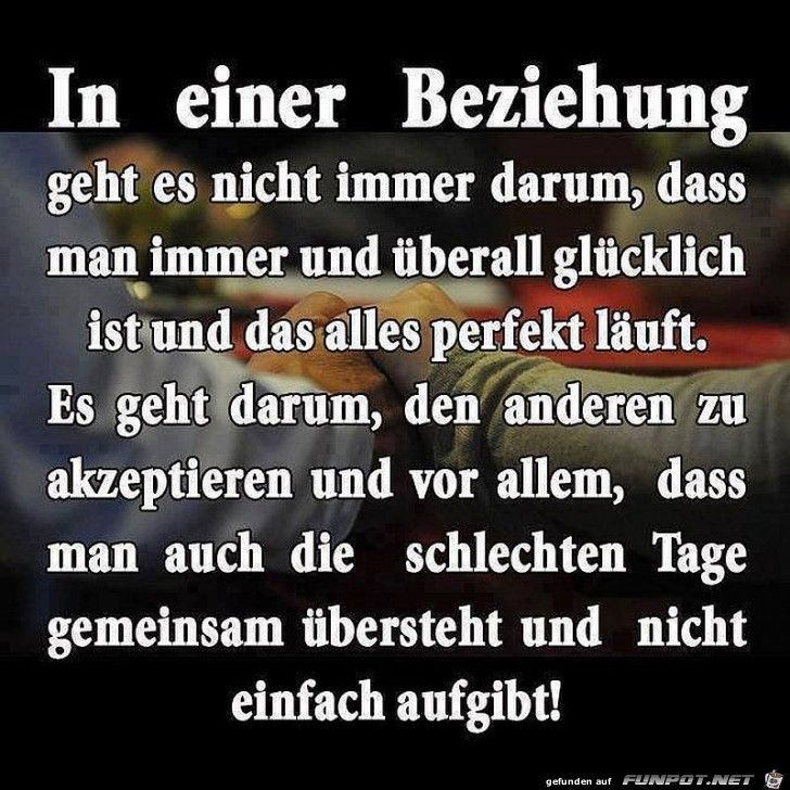 Schone Spruche Zur Liebe Und Partnerschaft Happy Quotes German Quotes Quotes