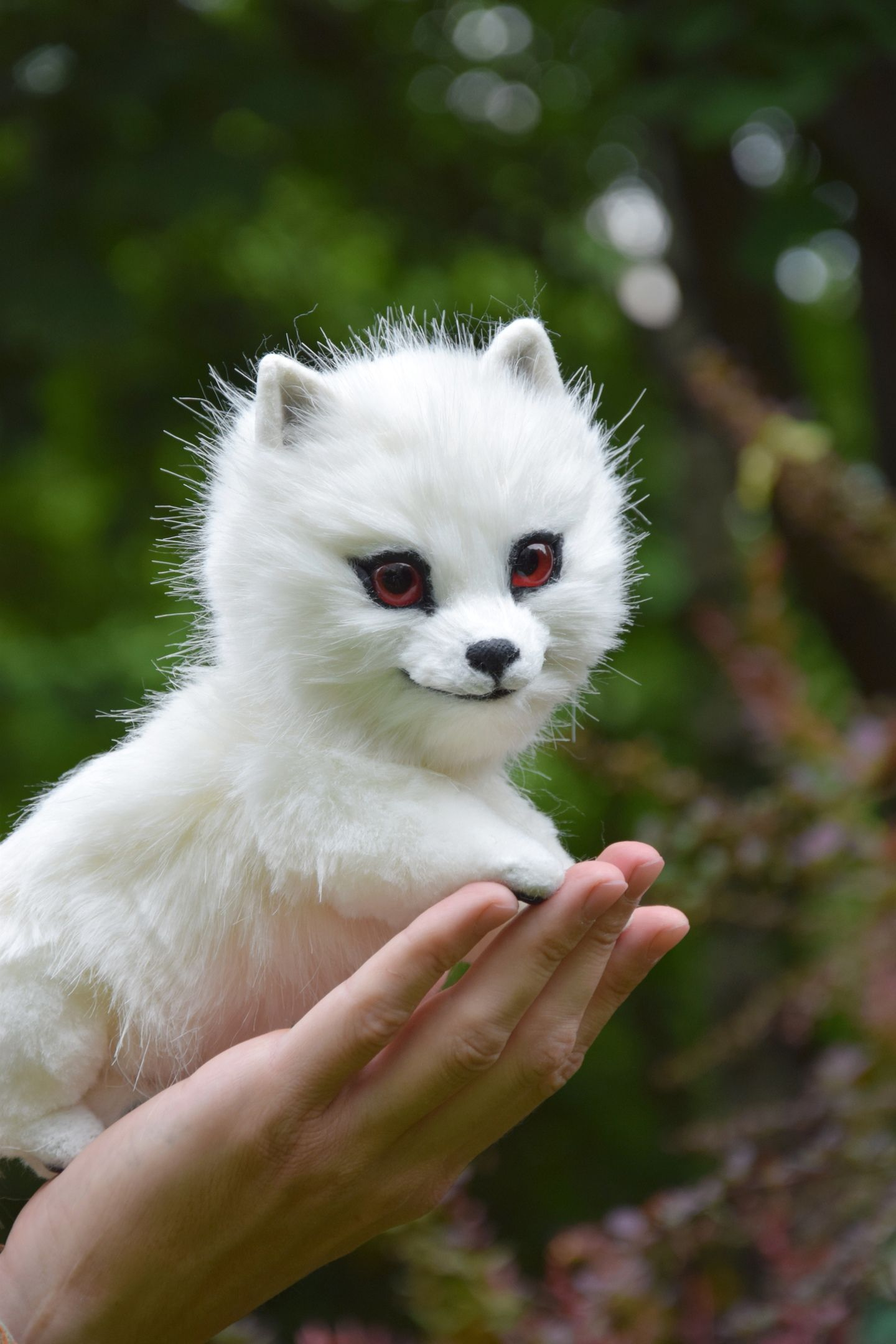 White DireWolf Ghost from Game of Thrones, Wolf Realistic