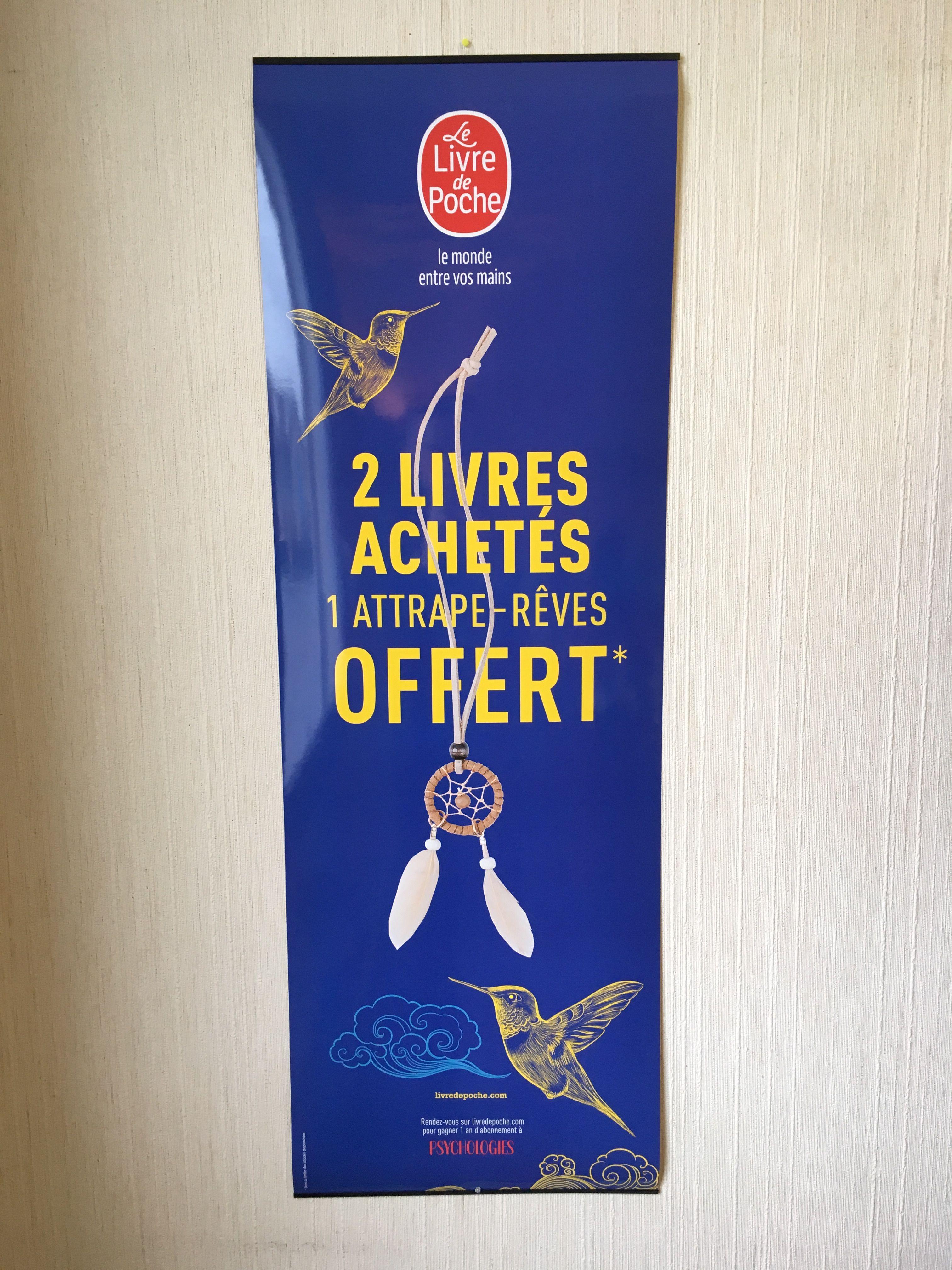 Un Kakemono Dans Les Tons Bleus Pour La Collection Livre De
