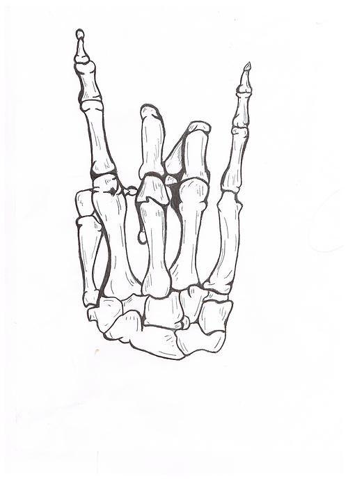 5a9da242c skeletons, bones, hands, rock n roll, hand signs   Death and ...