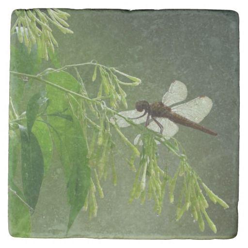 """Dragonfly Marble Coaster"" by Claudia H. Blanton  available via Zazzle"