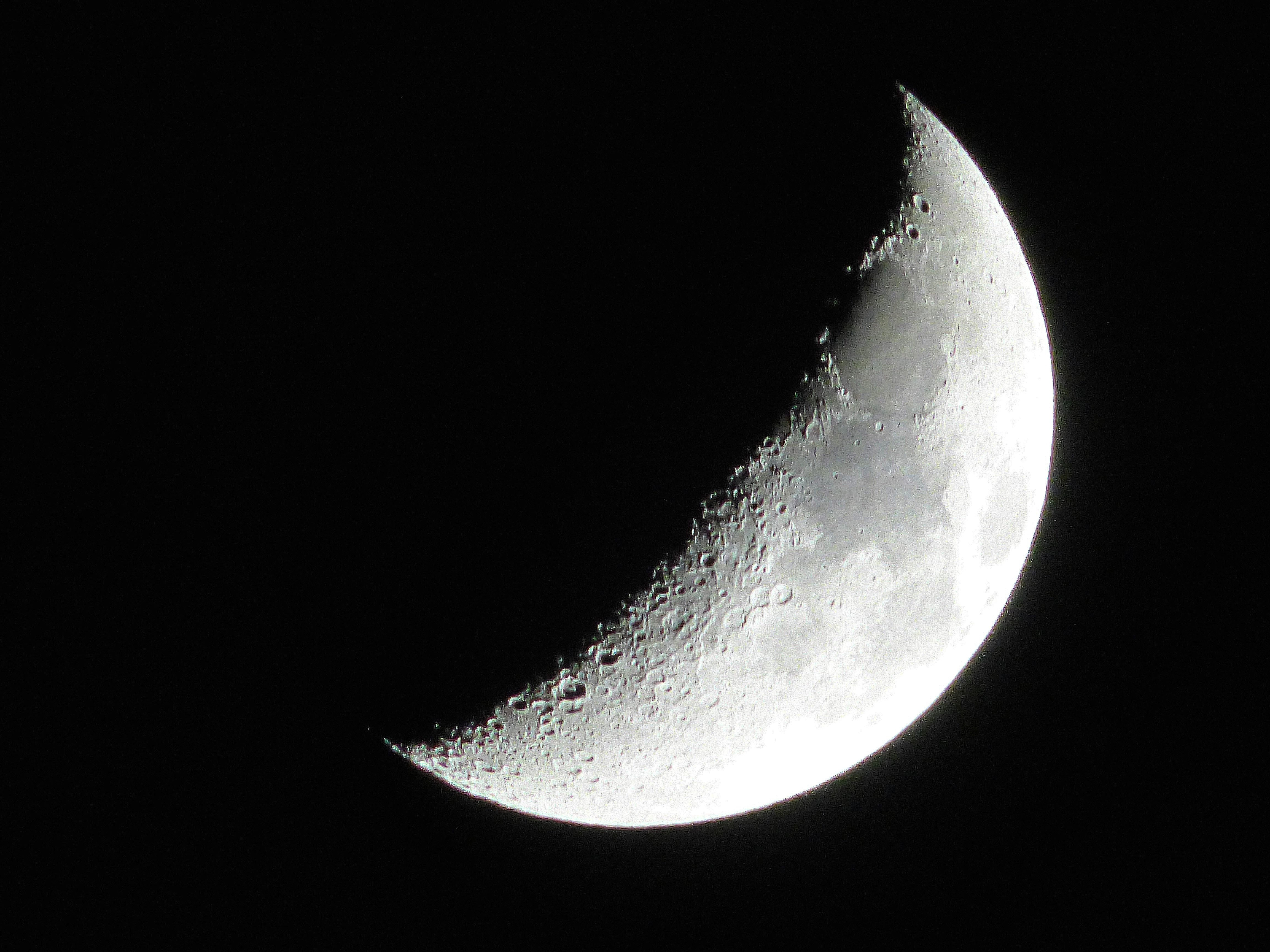 Half Crescent Moon With Face Tattoo: Crescent Moon - Google Search