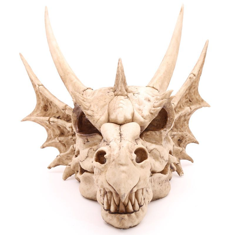 Large Wall Mounted Dragon Skull Ornament 47cm Our Fantasy And