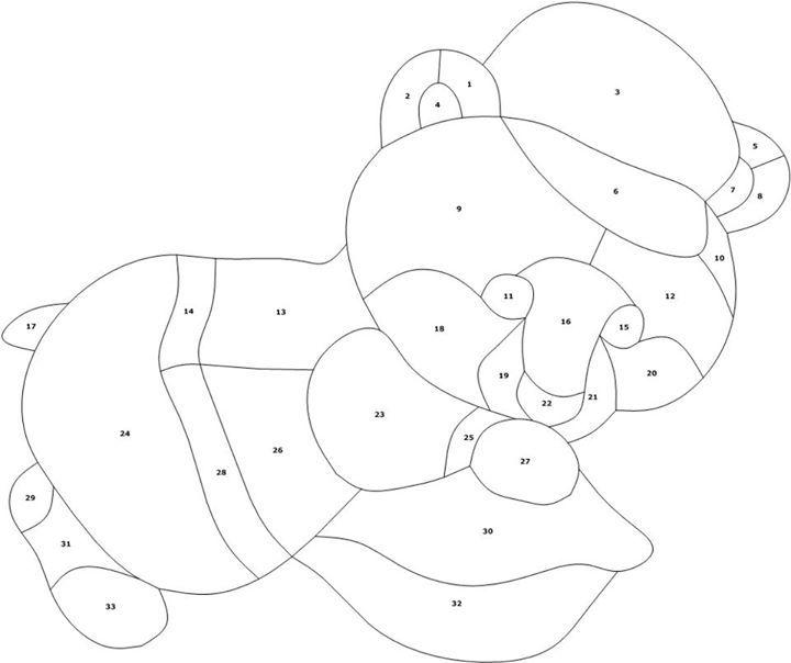 Little Bear pattern by Manon Cayer