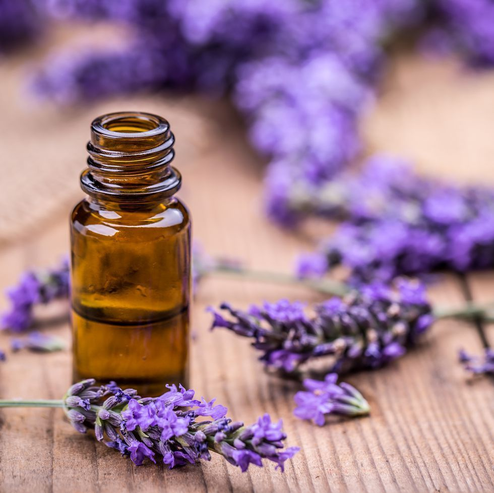 Herbal Oil And Lavender Flowers Beautytipsforacne