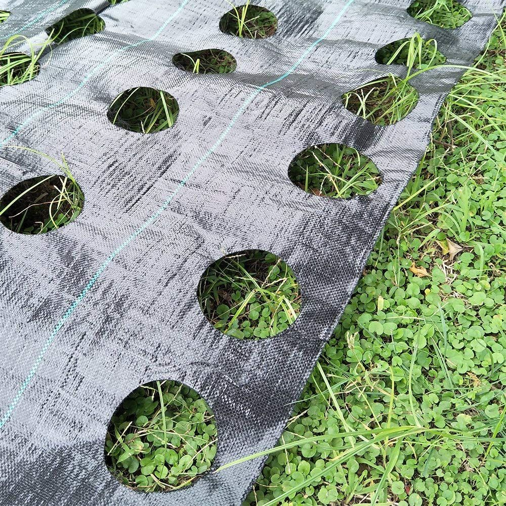 Origina Weed Control Fabric Planting Holes Ground Cover Weed