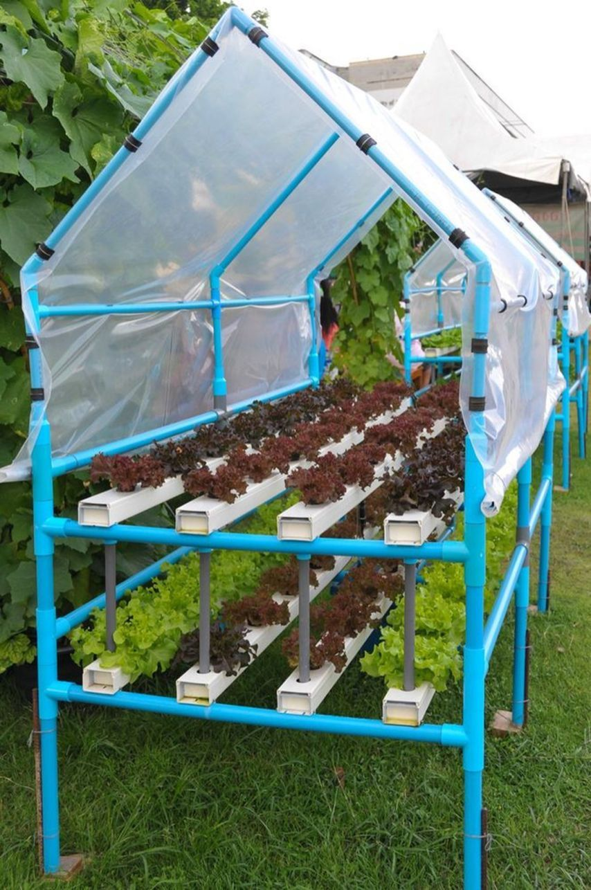 25+ Easy Hydroponic Garden Ideas For Good Alternative Garden in Your Home