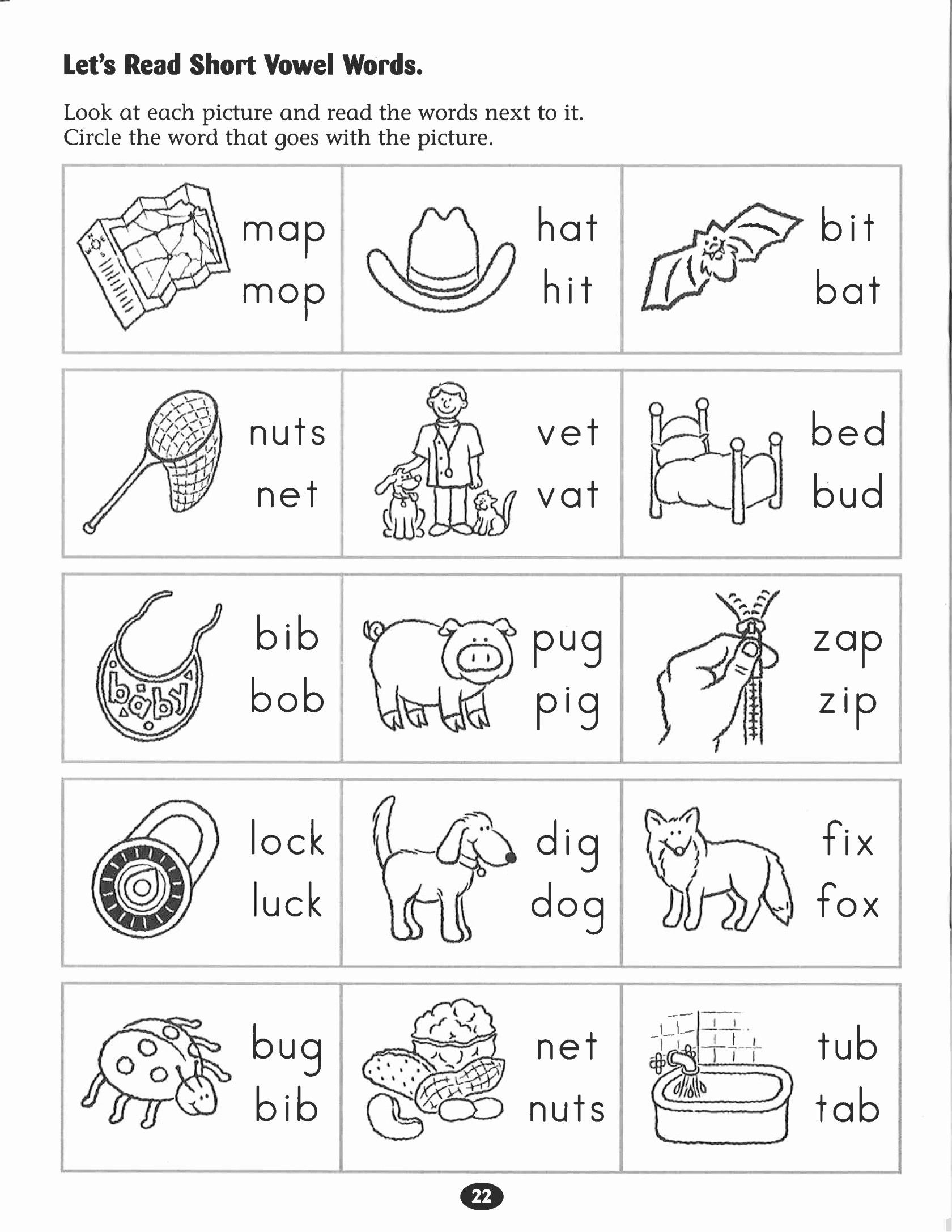 10 Beautiful Dinosaur Worksheets Preschool