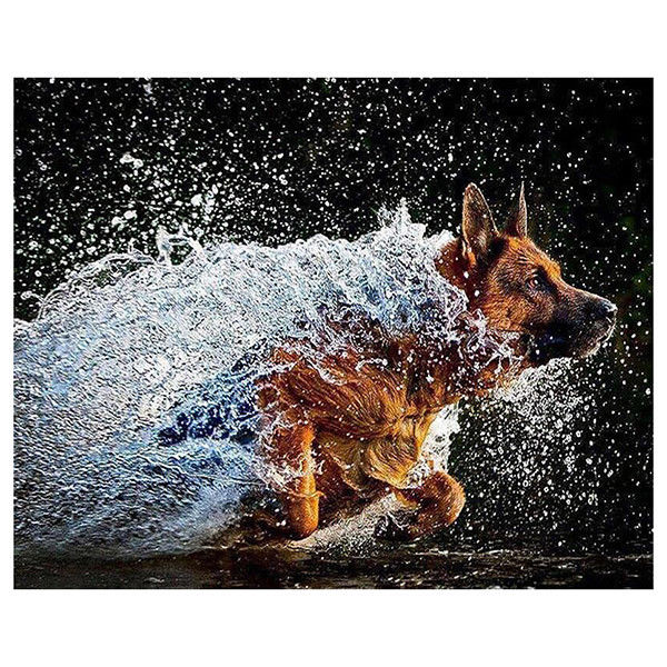 4 63 Gbp Diy Diamond Painting German Shepherd Dog 5d Diamond Embroidery Cross Stitch F6j4 Ebay Home Garden Germanshepherd Shepherd Dog