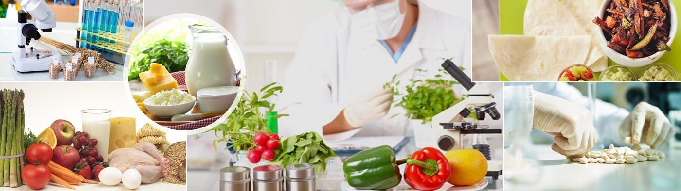 Guidelines for Food Shelf Life Evaluation Shelf life