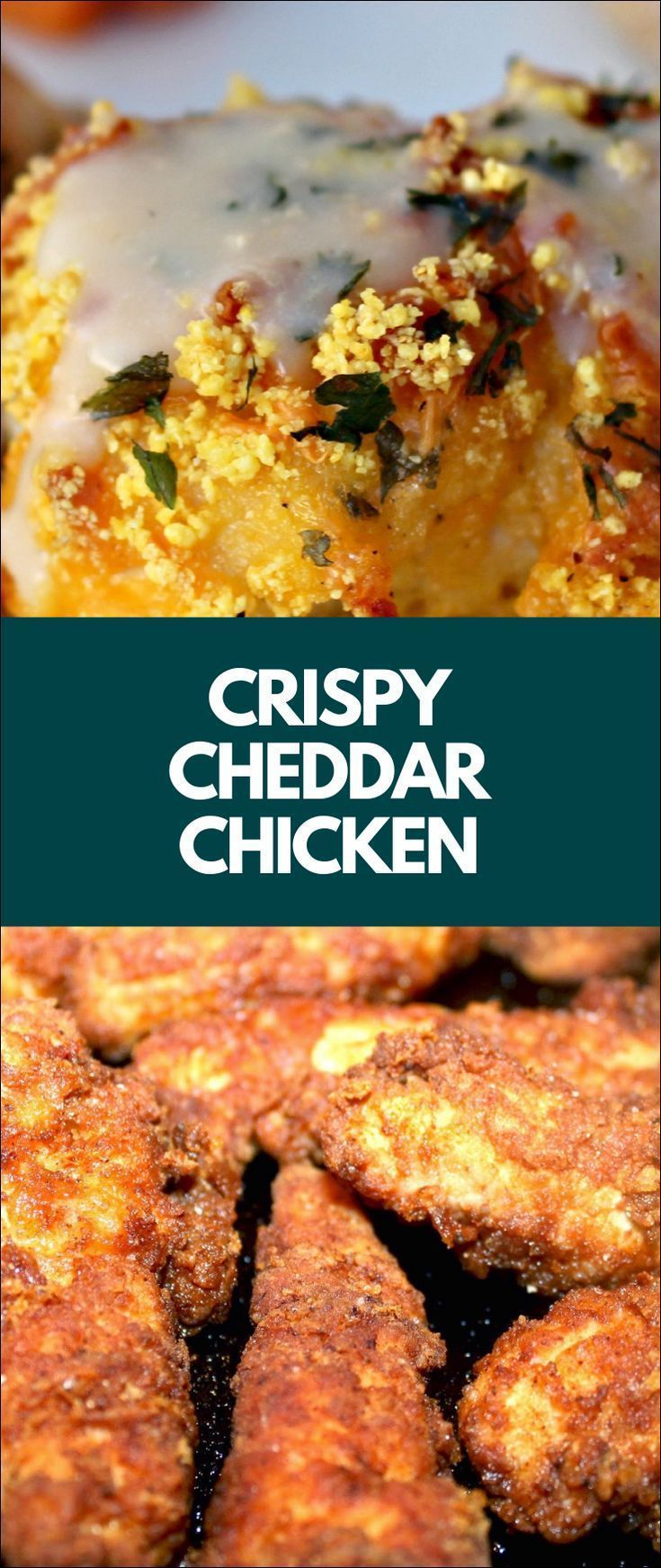 Crispy Cheddar Chicken #crispycheddarchicken Crispy Cheddar Chicken #crispycheddarchicken Crispy Cheddar Chicken #crispycheddarchicken Crispy Cheddar Chicken #crispycheddarchicken Crispy Cheddar Chicken #crispycheddarchicken Crispy Cheddar Chicken #crispycheddarchicken Crispy Cheddar Chicken #crispycheddarchicken Crispy Cheddar Chicken #crispycheddarchicken